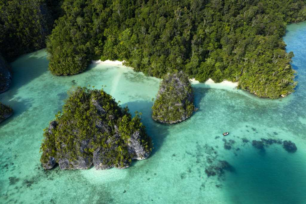 Into The Coral Triangle