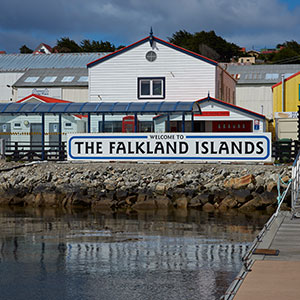 The Falklands: Once a Warzone, Now a Piece of Paradise