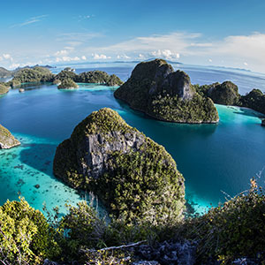 Papua and the Spice Islands in Images